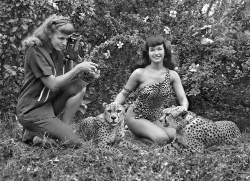 (via Bunny Yeager, Pinup Portraitist, Dies at 85 - NYTimes.com)  Bunny Yeager preparing to photograph the pi