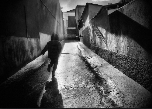 Rui Palha A race between the boy and the pigeon, Portugal Also
