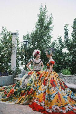 haute couture high fashion dolce & gabbana alta moda Manuela Frey Vittoria Ceretti fw2015