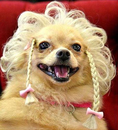 jetchasing:  Puppy Longstocking.  well , dats kinda scary….