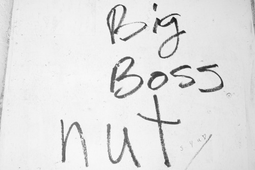 terrysdiary:  Big Boss nut