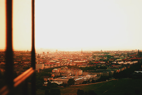 hannahlarsson:  Stockholm, view from Kaknästornet. Summer of 2010.