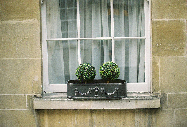 | ♕ |  Hello :) - Bath window  | by © thom♥