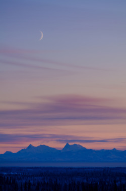 4nimalparty:  Moon over Alaska Range (by musubk)