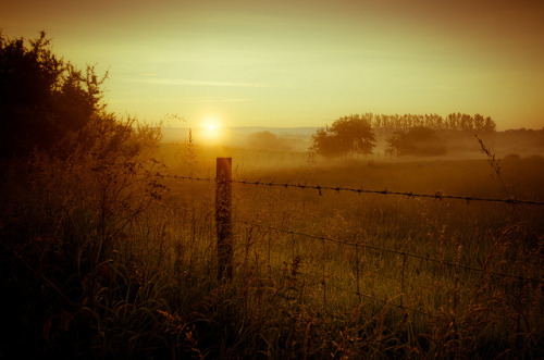 lillypotpie:  Dalemain Mist by Mark Littlejohn on Flickr.