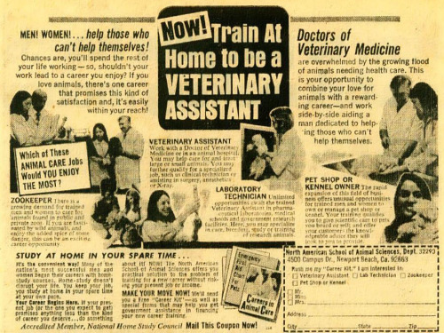 NOW! Train At Home to be a VETERINARY ASSISTANT