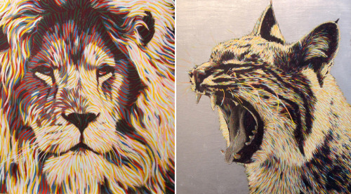 mackleroy:  Animal Art by Baso Fibonacci