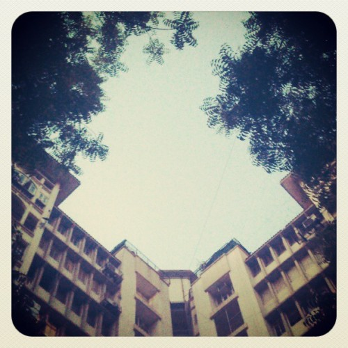#home #sky #trees #leaves #building