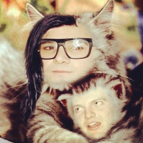 skrillex:  Ate some weird forest flowers with @dillonfrancis now we look like dis