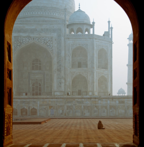 -cityoflove:  Agra, India via HIBARIN