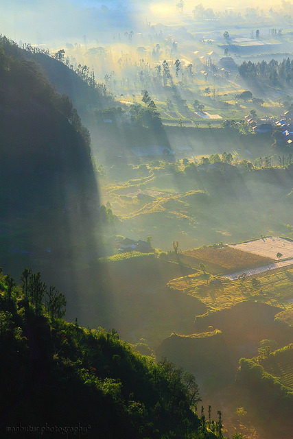 travelthisworld:  The Foggy Land ♦ Batur, Kintamani, Bali, Indonesia | by ManBatur Photography