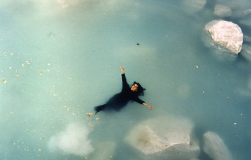 Shirin Neshat with Sussan DeyhimLogic of the Birds2001