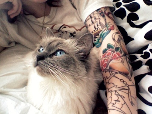 zerosympathy:  Bands, tats, girls and scenery here