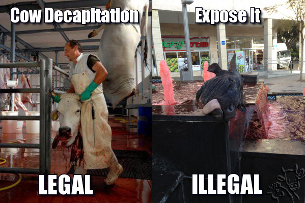 the-vegan-mothership:   The Israeli Fund against Hypocrisy Like This Page · 30 April        Meanwhile in Israel