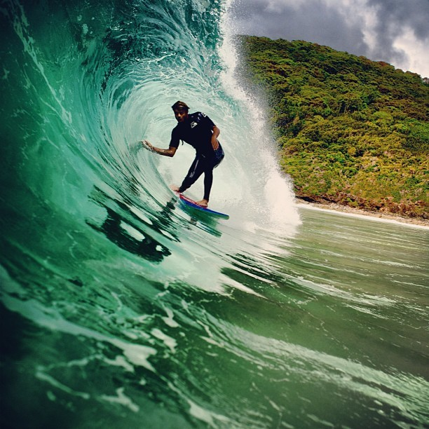 Dane. Photo by Morgan Maassen