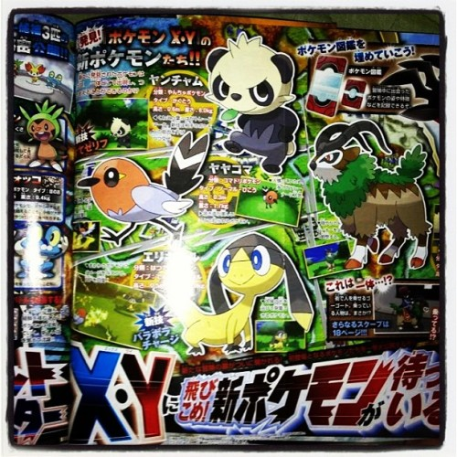 Omg! Dat Panda Pokemon. These designs are awesome! @-@ #pokemon #nintendo #panda #awesome #3ds #anime