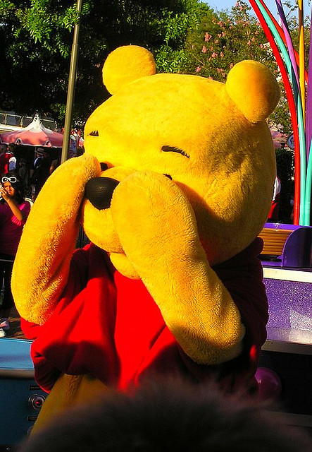disneyfreak94:  pooh bear! by PeterPan'sFlightRocks on Flickr.  <3 Disney