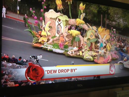 'Dew Drop' by!!  Happy New Year!! Are you watching the Rose Bowl Parade?