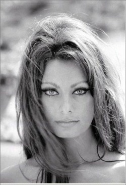 Sophia Loren, Italian movie star. Classic 60's-70's cat eye.