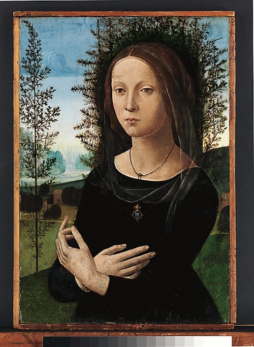 Portrait of a Young Woman by Lorenzo di Credi, 1490's Florence, the Metropolitan Museum of Art  This damaged but evocative portrait has been identified as the widow of Credi's brother, who was a goldsmith. This would explain why she is dressed in black and holds a ring. The juniper bush (ginepro) behind her could refer to her name, Ginevra di Giovanni di Niccolò. The picture was inspired by Leonardo's portrait of Ginevra de' Benci in the National Gallery of Art, Washington.