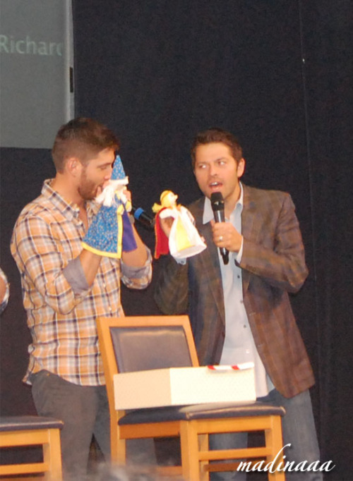 "onamelancholyhill:  misha-collins:  madinaaa15:  I was at JIB4 & now I understood:  COCKLES IS REAL AND NOTHING HURTS! Here is my story)  Warning: this post is for Cockles-lovers only – for those of them who believe ) The rest may go home. I saw it with my own eyes that Cockles is real and I don't care if anyone thinks otherwise. If someone simply told me about it I would shrug my shoulders too, but I'm used to believe my own eyes and my gut feeling.As for now I'm sorting through my photo-video-impressions, but I feel an obligation to write about the Cockles that I witnessed)It was on the last day of Jibcon, about 40 minutes before Misha and Jensen's panel. By that time I was through with autographs and photo-ops and I decided to accompany my friend E-Katy to her Misha's autograph – I just wanted to take an extra look at this wonderful man.We come to the autograph room, E-Katy takes her place in the line, and I'm standing right beside Fantasmagory who is there just for the same purpose as myself. The staff ask us why we are not in the line and I explain that we're here with a girl who doesn't speak English, so we're going to interpret for her.At this very moment Jensen, who is at the table nearby, finishes with his autographs, gets up together with Daniela and heads for Misha's table. E-Katy has already taken Misha's autograph, and an Italian girl gets out a huge book to be signed and puts it on the table in front of Misha. The three of us are huddled together in about 2 meters from the table beside several demons who are queued towards Misha. So we have a perfect vantage point ) Actually we weren't waiting for anything, we just wanted to drool at those two together, and as for myself, I thought Jens was about to walk past Misha behind his back and turn into the meet-and-greet room. So Jens approaches Misha from behind, leans heavily with his chest on Misha's back and covers Misha's hands with his own, you know like someone's sitting and you're hugging them from behind. We're like, WTF? – it's all happening in a couple meters from us… Then Jensen takes the marker out of Misha's hand, still lying on top of him with all his weight and almost pressing Misha into the table – Misha even said ""ouch""! – so obviously Jens was very heavy on him Jensen signs the book, still squishing Misha down with his body, then he rises a little, digs his nose into Misha's hair and draws it like that from side to side a couple of times, rubbing his face against Misha's hair. Our jaws are dropping, eyes basically popping out, and our feet seem frozen to the floor. The Italian girl who also sees all of it – by the look on her face, she's feeling much the same as us – wide-eyed, mouth open. She's looking round her, obviously in search of her friend. The demons are in the line, they're puffing at each other's napes so they cannot see any of this. As a result, only five people are the witnesses – the three of us and the two Italian girls in front of the table.Jensen goes on with his caresses. I guess he wrote something funny in the book, or he simply wanted to apologize for snatching the marker from Misha's hand. Holding Misha's chin with one hand, Jens presses his cheek against Misha's. Like, sorry, I'm so sorry!.. Then Jens backs off a little, making a step back, and Misha's looking up at him. Then they smile simultaneously, and Jens has those crinkles around his eyes, he's literally shining. Misha's also shining, and we're almost swept off by the affection and tenderness in their eyes. For about half a minute they're just looking into each other's eyes, and, as they say, the whole world has stopped around them and only they two exist. Very meaningful glances, so much intimacy. They didn't give a damn about us, about the staff and the Universe in general. There were literally hearts in their eyes. It couldn't be rendered in words, even in a video – all that chemistry between them, all that affection OMG!Then Jens turns off, still smiling, and he's shining like a new dime when he and Daniela walk past us towards the exit (i.e., he hasn't been going to the meet-and-greet room, he's come up to Misha on purpose! Misha's table wasn't on his way; he turned to Misha because he just couldn't miss the opportunity!). And Misha lowers his eyes with a smile and starts signing the book. And here our shame begins as we're just done.We three turn back like we're one, then make something that can be described as three awkward steps and then we just hurl out of the room (i.e., Misha can see us and he's perfectly aware why this three morons are clattering on their high-heels. We stop only in the hall, look at each other and then SQUEE!!! (Which of course can be heard from the autograph-room).The staff are gaping at us like we're lost our minds. E-Katy and I, we realize that we must relate all of this to Swoon. And we must do it ASAP. Then I had a chance to learn from my own experience what Motor ass means. We (still in high-heels) rattle to the panel room, and stuff open the doors for us (usually they ask to show them the pass). We rush into the room, run to our places where we land and start yelping into Swoon's ear, ""Swoonie, Swoonie! There's Cockles there!"" But she's meditating at Brock's panel, so she hisses back, ""Hush!"" We again, ""Swoonie, Swoonie!"" She, ""So what do you have there, Cockles? What Cockles? Here's Brock"". And she turns off, totally indifferent. You know, it's rather inconvenient, impossible even to sit quiet when one has a burr under one's saddle. So, as soon as we understand that Swoonie is a lost case, we take off and head for the exit again, fly out the doors (poor staff) and just run with no aim, for the sake of running. On our way we meet the girls from the groop Vkontakte, then Kid and Giovedi, and then Winchester. We tell everyone everything that happened (shouting and squee-ing applied), then we rush to the room where I left my phone to charge. We dial up Kim_lm and RED, squee and demand that they write some entries in their blogs right away. All in all, I just didn't expect that we, the three well-balanced grown-up women as we are, could be so bashed by the affection between two men. It's such a pity that using camera wasn't a possibility – Daniela was standing right there and we would've been kicked from the room immediately. And it's a pity that one cannot have tiny cameras inside one's own eyes. It would've been a coming-out. Do I have to add that Misha got the bracelet on his arm somewhere between the autograph room and the panel? And that Misha's panel was delayed for twenty minutes? The staff were puttering about and shrugging their shoulders, and Matt on the scene had to entertain the audience as Cockles got stuck somewhere else. I want to say that what I saw wasn't interaction between two friends, it was between two lovers. Jensen has a crash on Misha – do not believe when someone says that Jens fends Misha off, that he's cold to him and is being dismissive of him in general. Jensen adores him. And how is it possible not to love Misha? – Actually, he's very nice, humble, self-conscious, very pleasant man – one can fall in love with him heels over head, especially a top like Jensen. BTW, Swoon officially asked to say for her that JENSEN IS A TOP and that she doesn't doubt it now that she's seen the way they interact with each other (as for me, I never had any doubt).But what stunned us the most was that affection, that love that was streaming from them both while they were staring at each other.All in all, COCKLES IS REAL AND NOTHING HURTS! And I'm not going to persuade those who don't believe. I saw enough! Now I believe that Jared actually whispered to a fan that he knows about Cockles. And that he actually posted the photo with wine glasses, titling it ""this is what you've been waiting for"". And many other things. I'll be updating this entry as all I've been capable of for now is this hectic report.   [x]  I didn't want to reblog this at first… but now we have the proof so I will do it… and I will smile 5000000 years for them, because jqhdhdqkj-"