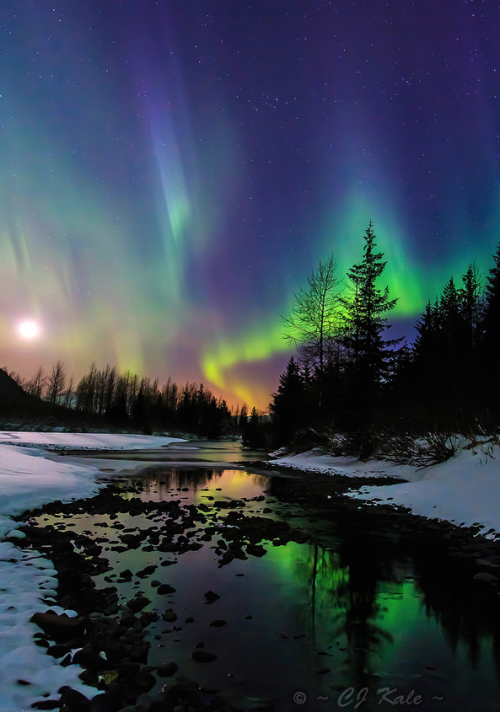 ecocides:  Aurora in Alaska | image by Cj Kale