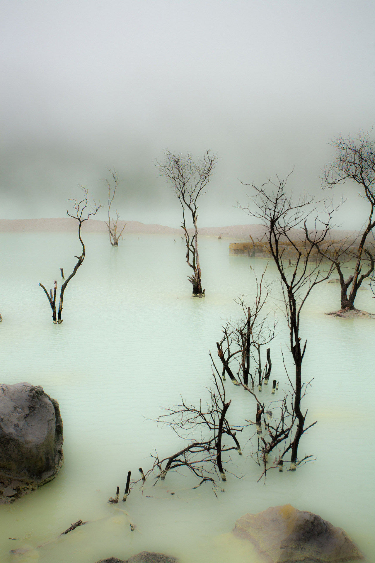 ianballa:  bekor:  Kawah Putih Lake, Hank888  fuck that, its the dead marshes