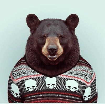 #sweater#bear