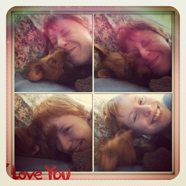Me and my little Lady #Australianterrier #puppy #love #cute #biting #face #playful #kisses #redhead #redheadpride #smile   #instacollage (at Pines Blvd And SW 68 Ave)