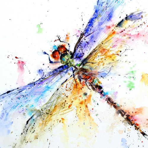 Dean Crouser - Dragonfly. Watercolor