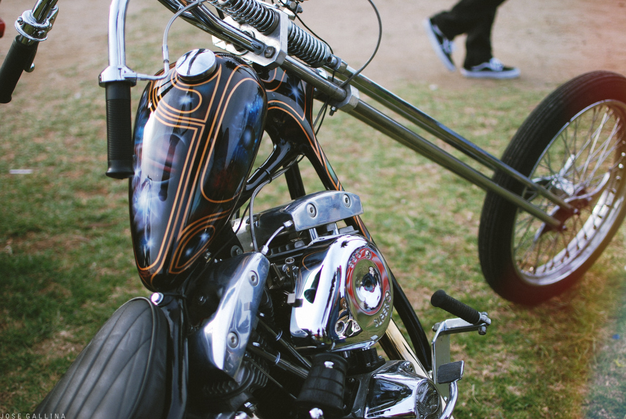 David Mann Chopperfest 2013//  Paint by: https://www.facebook.com/spagettysgarageco