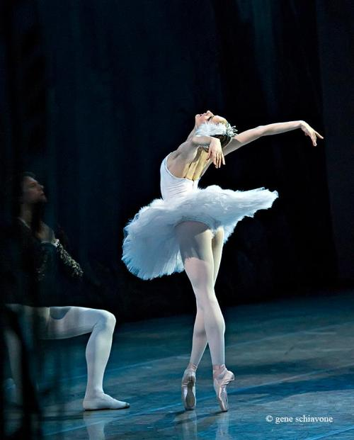 "ele-bee:  Olga Esina and Yevgeny Ivanchenko in ""Swan Lake,"" Mariinsky Theatre. Photo (c) Gene Schiavone."