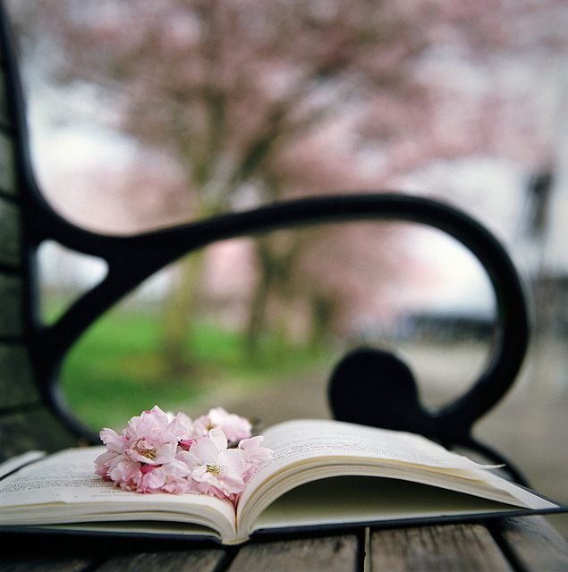 blossom tales by manyfires on Flickr.
