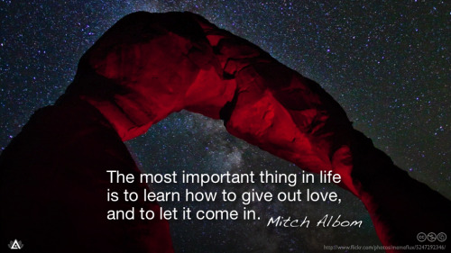 The most important thing in life is to learn how to give out love, and to let it come in.— Mitch Albom