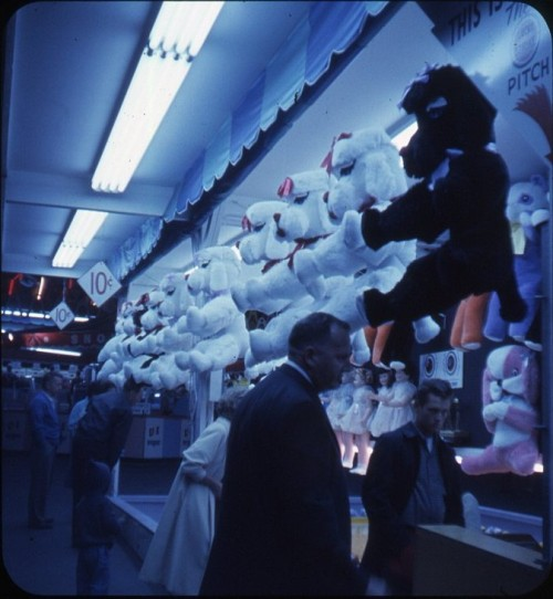 Carnival Prizes at the Seattle World's Fair, 1962  Bruce Thomas
