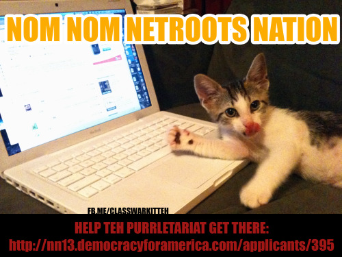 Hai Internet! Help a member of teh purrletariat get to Netroots Nation! VOTING ENDS in 2.5 HOURS! Sadly, one cannot get to Netroots Nation through consensus=(