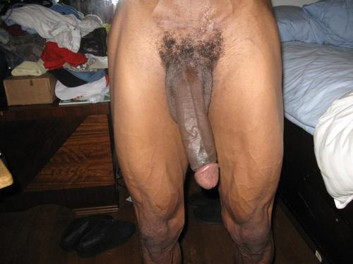 fuckyeahbigblackcocks:  The Bottomline Is The Black Cock Is Supreme… http://fuckyeahbigblackcocks.tumblr.com/