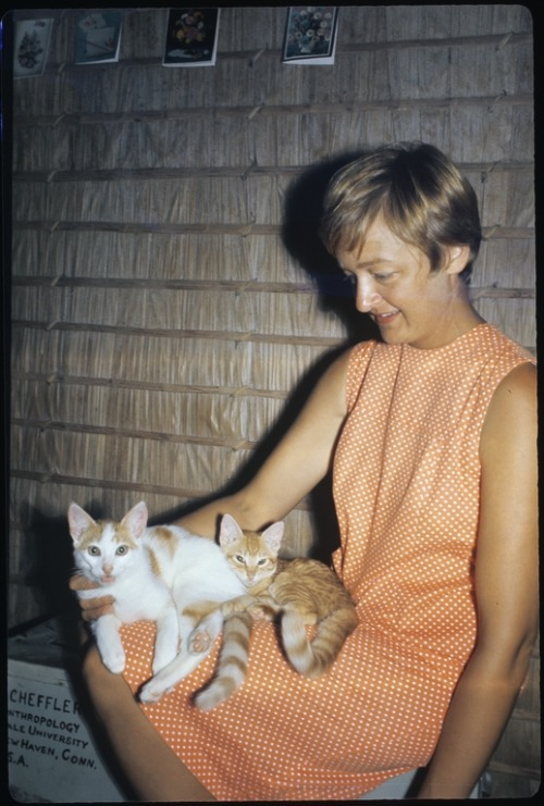 Harold W. Scheffler: Photograph of Anne Scheffler with cats at Hopongo (New Paradise), Rendova, October 1967. Source: UC San Diego, Mandeville Special Collections Library, via Calisphere. P.S.: VCL.