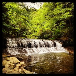 Gorgeous hiking trail at Robert H. Treman State Park #vacationwithmrman