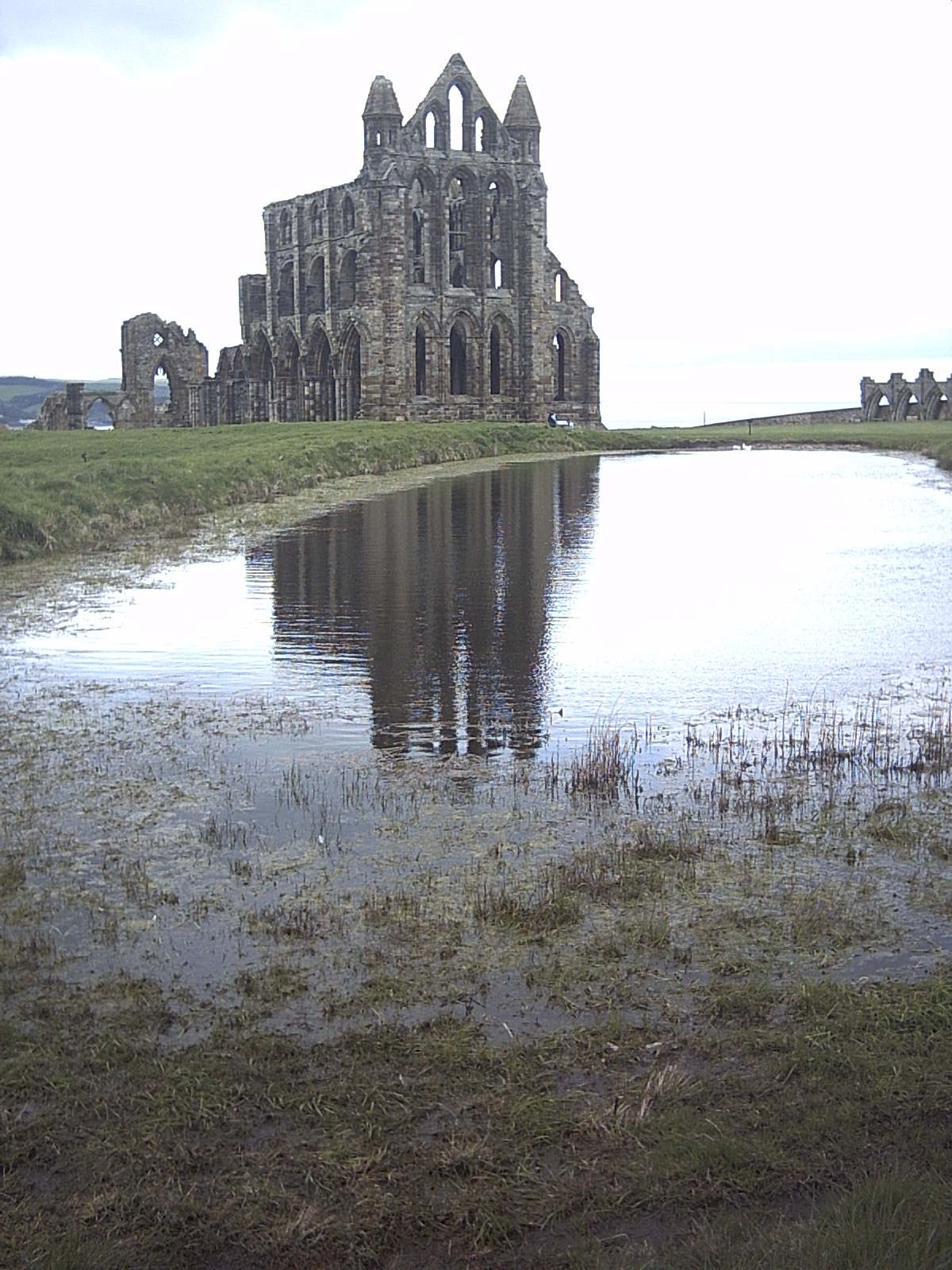Whitby Abbey by Neil Gray (Home is where the heart is, right?)