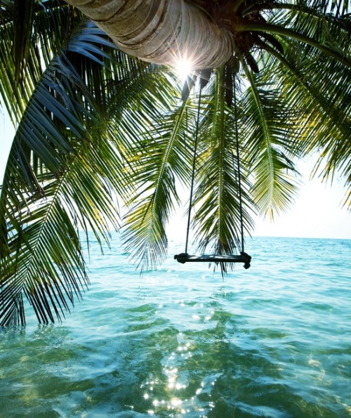 bluepueblo:  Sea Swing, The Bahamas photo via adam