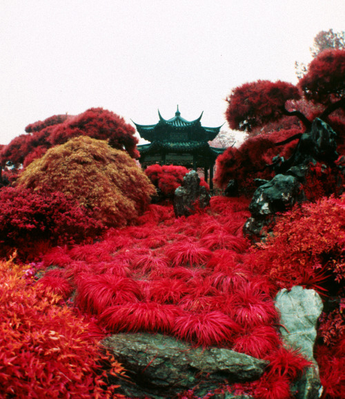 italdred:  Hangzhou West Lake Garden (by kgartner)