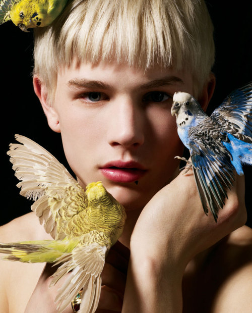 """The Divine Comedy"" - Luke Worrall photographed by Ram Shergill for Drama magazine"