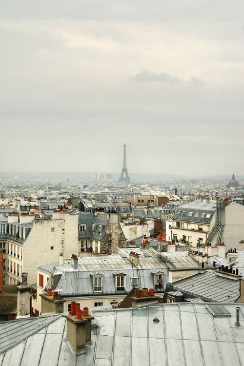 cataclysmtheories:  View of the Eiffel Tower over rooftops (via View of the Eiffel Tower over rooftops | Murray Mitchell)