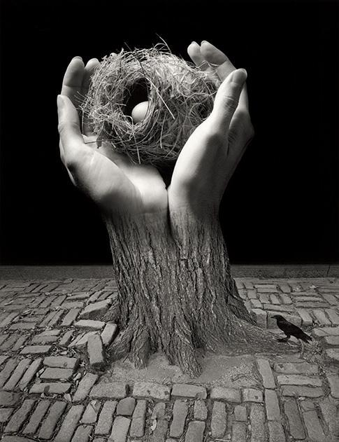 "Smithsonian:  In the 1960s, Jerry Uelsmann revolutionized the art of photography by manually blending negatives to produce dreamlike landscapes. ""The primary creative gesture for most photographers used to be when they clicked the shutter,"" Uelsmann says. ""But I realized that the darkroom was a visual research lab where the creative process could continue."" Though we're now in the era of Photoshop, he continues to forsake digital manipulation, as with the 2006 untitled image made from three photos, one including his wife's hands. ""It is an incredible leap of faith to think maybe this tree could blend into these hands,"" Uelsmann says. ""But the camera is a license to explore."" Uelsmann's creations are showcased in a traveling exhibit, ""Faking It: Manipulated Photography Before Photoshop,"" at the National Gallery of Art through May 5."