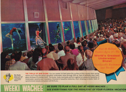 oldflorida:  Weeki Wachee Underwater Theatre
