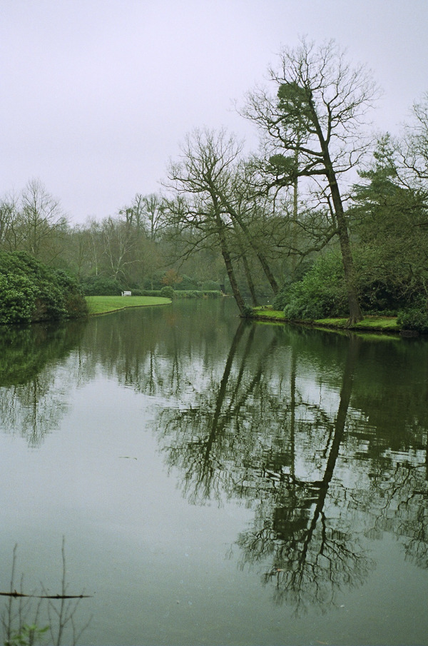 Open spaces. Nikon fe10 and Kodak Pro100 film.