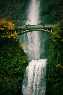 fornicating:  Multnomah Falls by Morgan Knorr