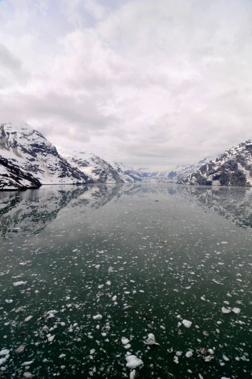 h4ilsham:  Glacier Bay, Alaska (by Marnie Recker)
