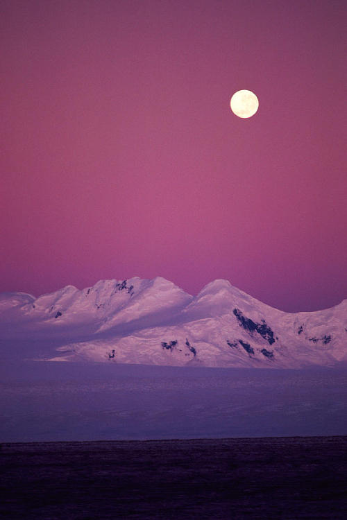 grvnted:  Moonrise over snowy mountain.